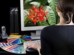 Image result for art director