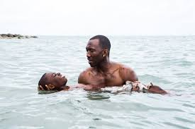 WGA Awards Moonlight Arrival Wins Top Film Prizes.