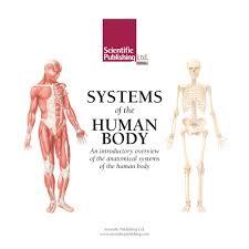 Anatomy Flip Charts Systems Of The Human Body Flip Chart