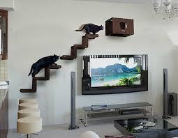 trendy cat furniture. spectacular modern cat furniture from brazil trendy