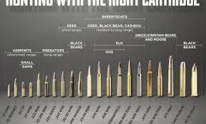 Deer Rifle Caliber Chart 22 Symbolic Rifle Calibers By Size Chart