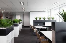 amelia sales office design. Let Your Work Guide Office Layout And Design Amelia Sales N