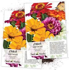 Garden State Floral Design Seed Needs State Fair Zinnia Mixture Zinnia Elegans Twin Pack Of 250 Seeds Each