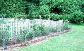 garden fencing small garden fence ideas small garden fencing ideas for small garden fencing ideas