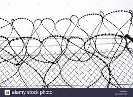 Old fashioned simple chicken wire gate collection electrical