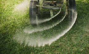 fall is practically here and this is the season you should give your lawn the rejuvenation and care it deserves lawn care in the fall is a long term
