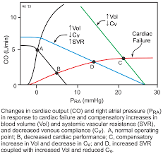 Pathophysiology Of Chf Cv Physiology Pathophysiology Of Heart Failure