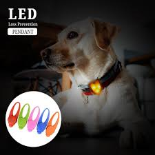 Blinking Lights For Dogs Us 2 27 1pcs Pet Led Pendant Safety Flashing Glow Light Blinking Led Collar Pendant For Pet Dog Puppy In Collars From Home Garden On