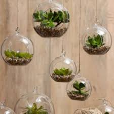 7 Stylish Ways To Use Indoor Plants In Your Home's Dcor
