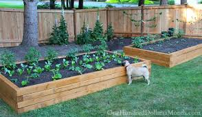 how to make a box garden. Exellent How Depending  Intended How To Make A Box Garden