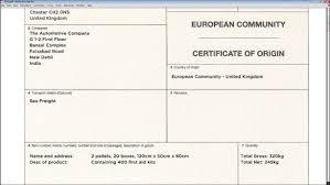 Certificate Of Origin Template Certificate Of Origin Template Free Fiveoutsiders 23