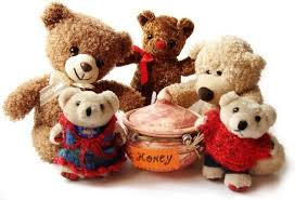 teddy pictures free stock photos
