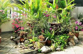 Container Garden Design Best Inspiration Ideas