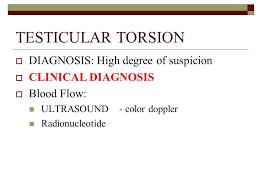 testicular torsion newborn. 15 testicular testicular torsion newborn r