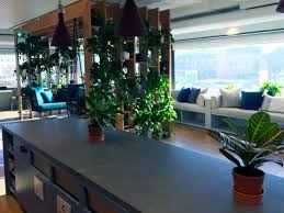 dublin office. Stripe\u0027s Request Of Their Dublin Office For Plants Rental During Our Onsite Consultation At Office, Requests Were A Fully Lush