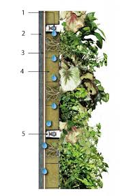 green wall specification and drawings