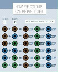Eye Colour Prediction Chart Pin By Nicole Caballero On New Way Of Life Eye Color Chart