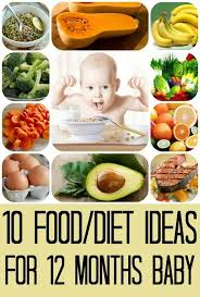 13 Month Old Baby Diet Chart Top 10 Ideas For 13 Month Old Baby Food 12 Month Baby Food