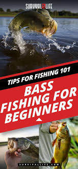 Bassmaster Fishing Chart Bass Fishing For Beginners How To Videos Fishing Tips Bass