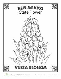 Small Picture State Flower Coloring Pages Illinois State Flower Coloring Page