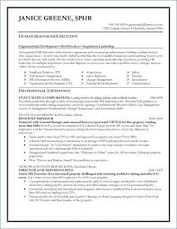 Free Resume Program Adorable Program Manager Resume Sample From Program Manager Resume Sample