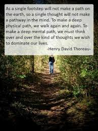 Henry Thoreau Quotes Fascinating Best 48 Henry David Thoreau Ideas On Pinterest Henry David