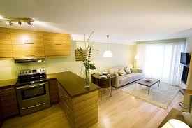 Superior Small Kitchen Living Room Design Ideas New In Raleigh Kitchen Cabinets Home  Decorating