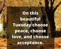 stuning tuesday inspirational images