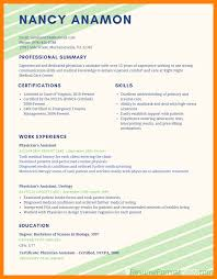 Resume Format 2017 100 resume format latest 100 sales clerked 79