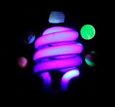 Black Light Lamp Bulbs 2 X Uv Light Bulbs Blacklight Uv Light Bulbs Black