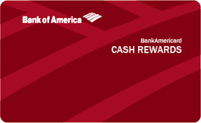 New applicants earn $200 in cash back after making $1,000 worth of new purchases within 90 days of account opening. Https Birchfinance Com Compare Credit Cards Cards Bankamericard Cash Rewards For Students Vs Discover It For Students