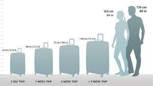 Delsey Luggage Size Chart Understanding Suitcase Sizes Guide You Could Travel