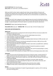 job description data manager