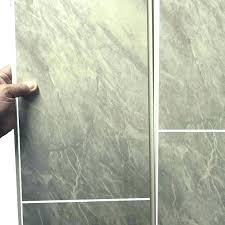 cleaning vinyl shower walls grooming salon vet clinic pet wall