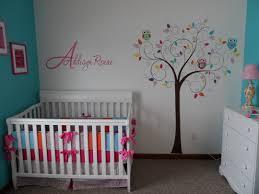Baby Girl Owl Themed Nursery Aryan Pinterest