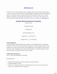 Waitress Description For Resume resume waitress waitress description for resume resume for study 1