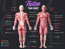 125 Tattoo Designs Ideas About Tattoo Pain Chart Body