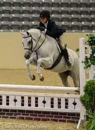 Ada Catherine Hays Scores Early Birthday Present Winning USEF Pony Medal  Finals | Phelps Media Group