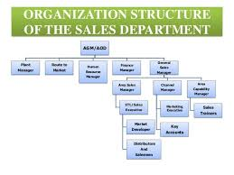 Sales And Marketing Department Chart Image Result For Sales Department Structure Sales