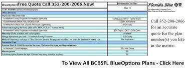 Florida Blue Plans Bepatient40 Delectable Blue Cross Blue Shield Quote