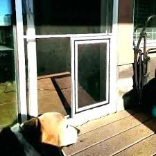 screen door with doggie door screen door with dog door dog door awesome patio door dog