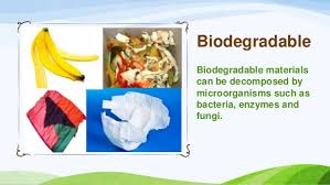 Biodegradable And Non Biodegradable Materials