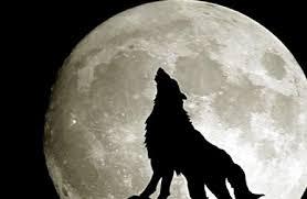 Luna piena gennaio 2020 ➢ Eclissi lunare 10 gennaio 2020 ...