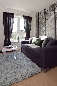 apartment living room rug. Cool Apartment Living Room Ideas With Elegant Design: Grey Furry Rug For