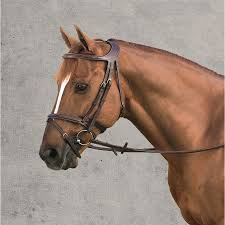 Dyon Difference Bridle Dover Saddlery