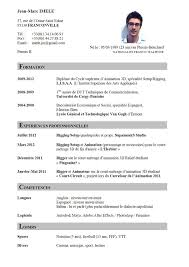 how to make resume on job here are cv templates in french to help you with