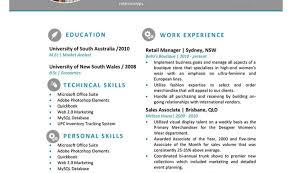 Amusing Professional Resume Template Microsoft Word Tags