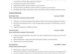 Resume Format Quantity Surveyor Cv Sle For Bill Of Impressive Land ...