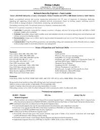 Information Security Consultant Resume Sample Sidemcicek Com