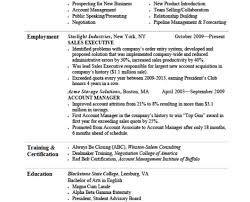 Professional Summary For Resume Professional Summary Examples For Resume Resume Badak Resume 91